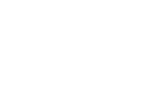bike the big easy white logo